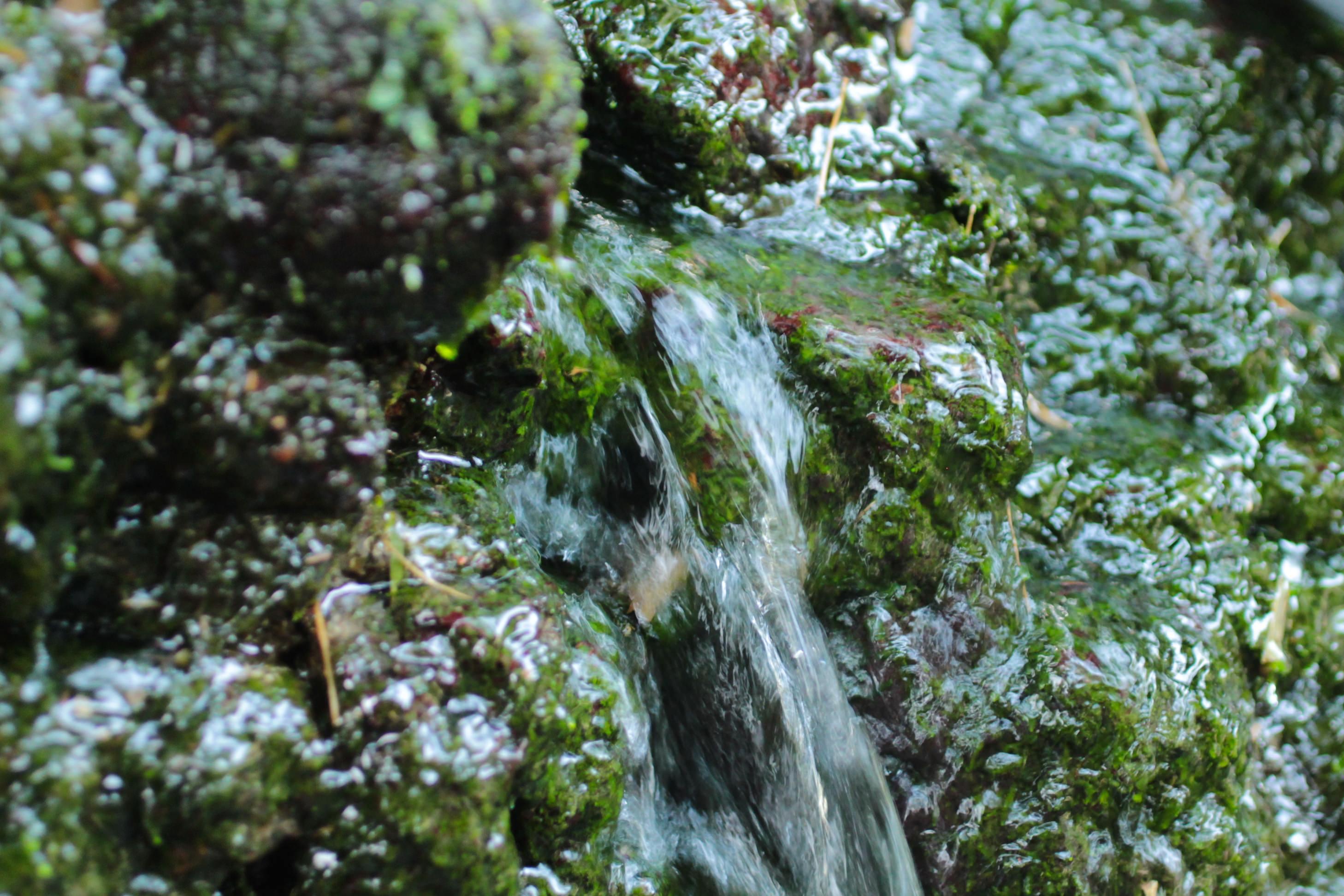 頭石湧水2