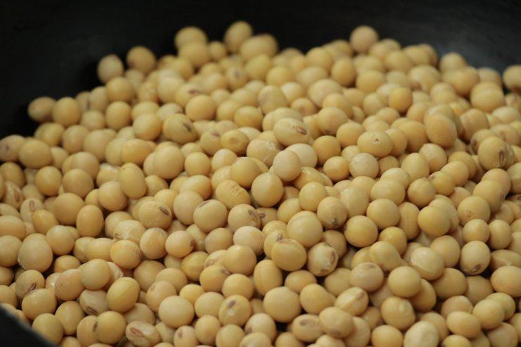 モンブランフジヤ-きなこ(大豆)